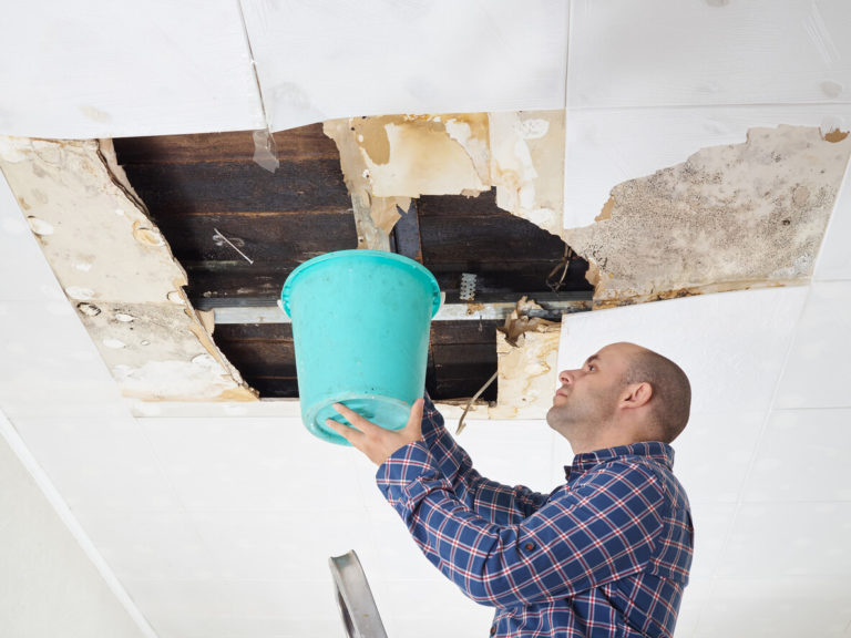 What to do if you find your roof is leaking